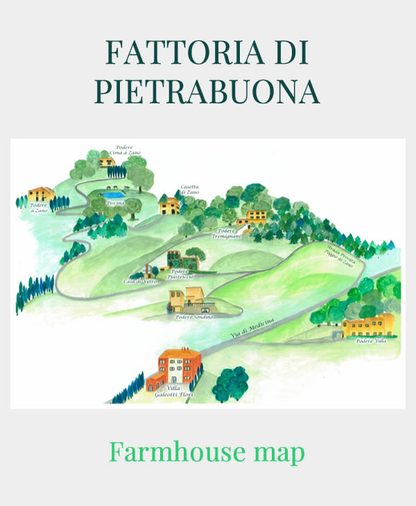 Farmhouse map of Fattoria di Pietrabuona